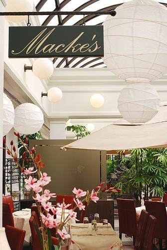 mackes 1
